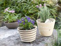 【ひなたぼっこ】植木鉢
